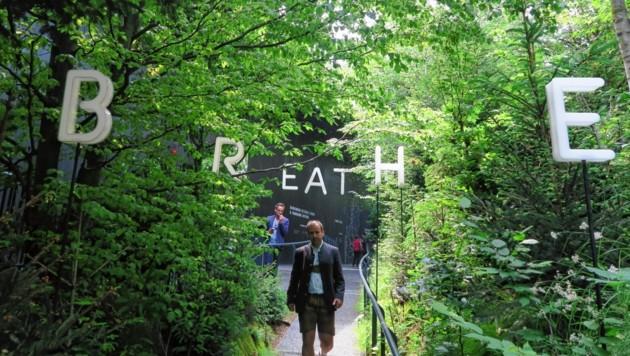 Der Pavillon vom Breathe Earth Collective war der Renner auf der Expo in Mailand. 2020 bekommt auch Graz einen Klima-Pavillon. (Bild: Expo Mailand)