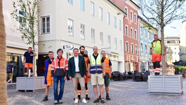 Wanderbaumallee Hauptplatz Bürgermeister Günther Albel (Bild: Karin Wernig/ Stadt Villach)