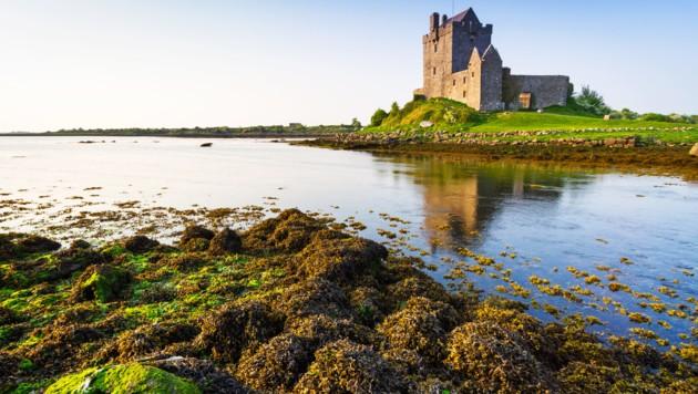Dunguaire Castle (Bild: ©Patryk Kosmider - stock.adobe.com)