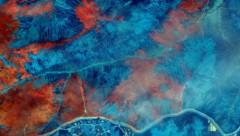 Ein Satellitenfarbbild zeigt das Ausmaß des Feuers (Bild: AP)