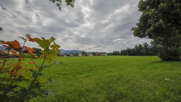 Auf dieser Wiese an der Berchtesgadener Straße sollen bald Hunderte Menschen wohnen. (Bild: Tschepp Markus)