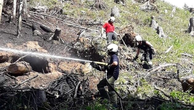 Die Kameraden der Feuerwehren arbeiteten im Steilhang. (Bild: FF Zell-Gurnitz)