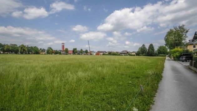 In Gneis will die Heimat Österreich ab Herbst 2020 insgesamt 230 Wohnungen errichten. Die letzte Bau-Etappe soll 2023 abgeschlossen sein. (Bild: Tschepp Markus)