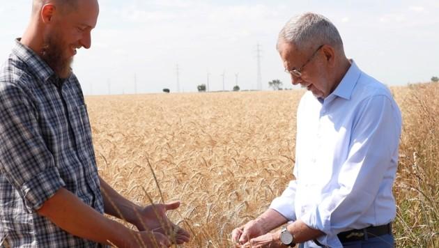 Direkt im Feld: Van der Bellen (re.) mit Biobauer Vinzenz Harbich (Bild: Zwefo)