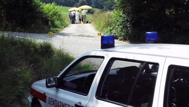 Der Tatort: Ein Feldweg in Sinabelkirchen (Bild: Heribert Weber)