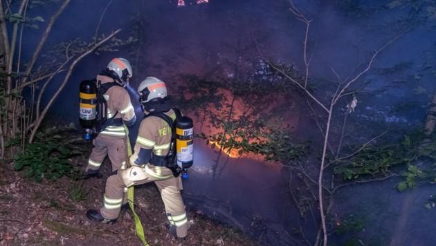 Waldbrände, wie dieser aus dem Vorjahr in Linz St. Margarethen, werden immer häufiger (Bild: Kerschbaummayr Werner)