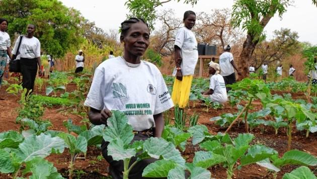 Landwirtschaftliche Schulungen sind Teil der Caritas-Projekte im Südsudan. (Bild: Caritas Steiermark)