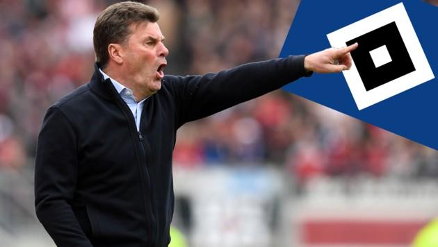 HSV-Trainer Dieter Hecking (Bild: AFP)