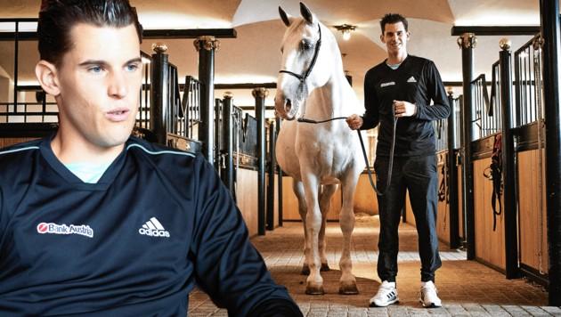 Der Tennisstar mit einem der Lipizzaner-Pferde aus dem Gestüt des berühmten Stanglwirts in Going. (Bild: ANDREAS TROESTER)