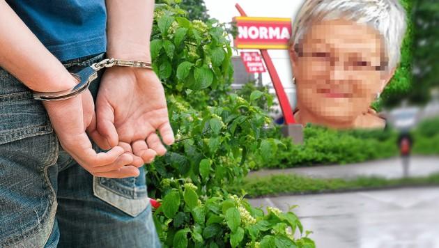 (Bild: stock.adobe.com, Polizei, Horst Einöder, krone.at-Grafik)