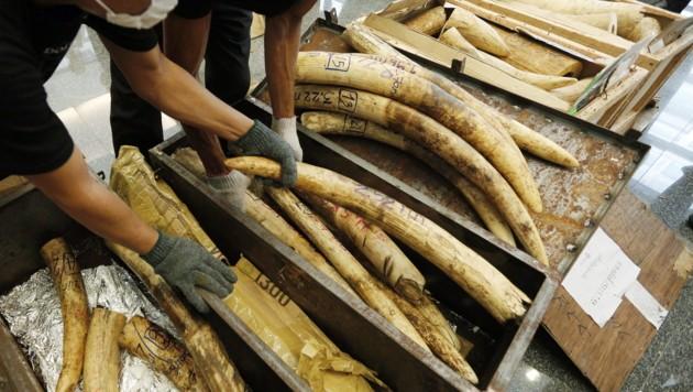 (Bild: EPA/Narong Sangnak)