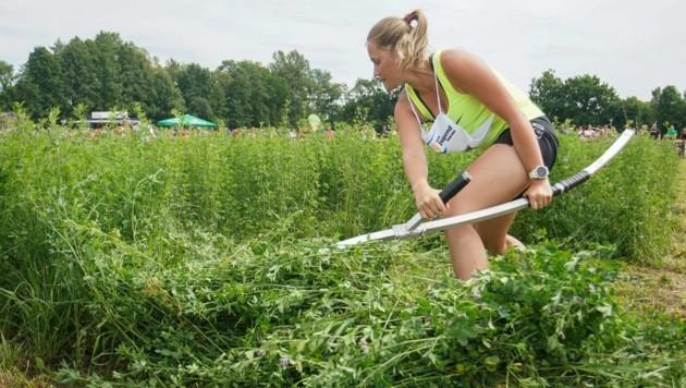 Vier Monate trainierte Sandra Achleitner für die Handmäh-Europameisterschaft (Bild: Pressefoto Scharinger © Daniel Scharinger)