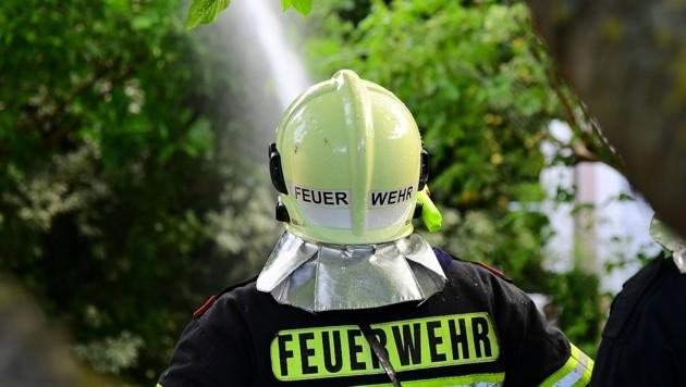 38 Feuerwehrmänner befanden sich im Löscheinsatz (SYMBOLDBILD) (Bild: P. Huber)