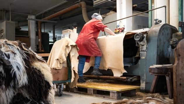 Nicht nur das Handwerk der Gerberei ist alt, sondern auch die Maschinen, die bei Trenkwalder noch heute im Einsatz sind. (Bild: Trenkwalder)