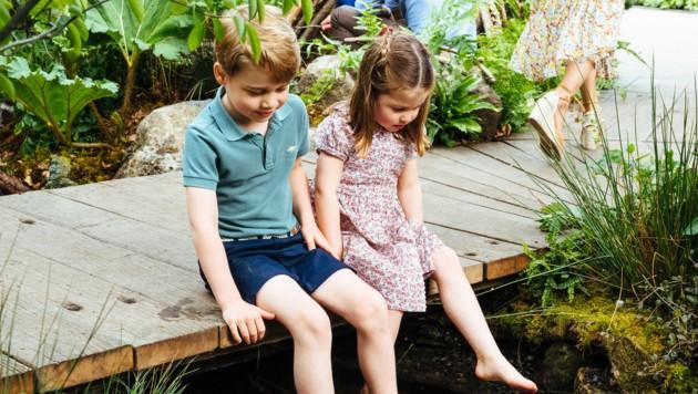 Prinz George und Prinzessin Charlotte (Bild: AFP)