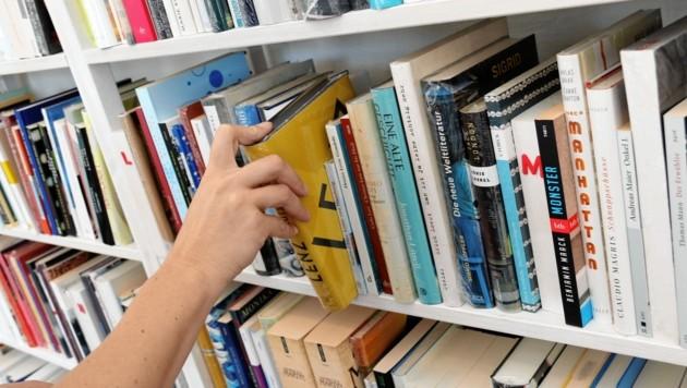 Wenn Büchereien geschlossen sind, ist die DIGITHEK ein wertvoller Ersatz. (Bild: Christian Jauschowetz)
