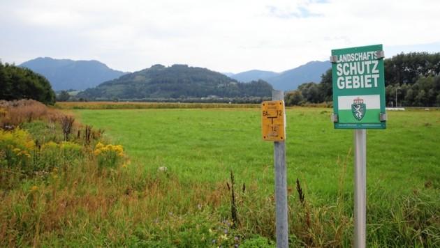 Auf diesem Grundstück in Stainach-Pürgg soll das Leitspital errichtet werden. (Bild: Sepp Pail)