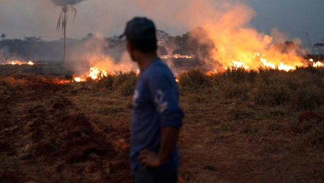 In Brasilien wüteten im August 2019 monatelang verheerende Waldbrände. (Bild: AP)