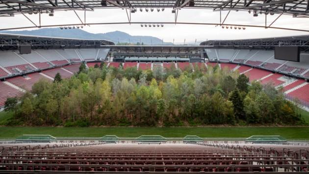 Interessierte können sich den Wald bis Ende Oktober ansehen. (Bild: Gerhard Maurer)