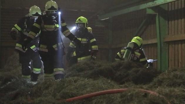 Knapp 150 Feuerwehrleute bekämpften den Brand.