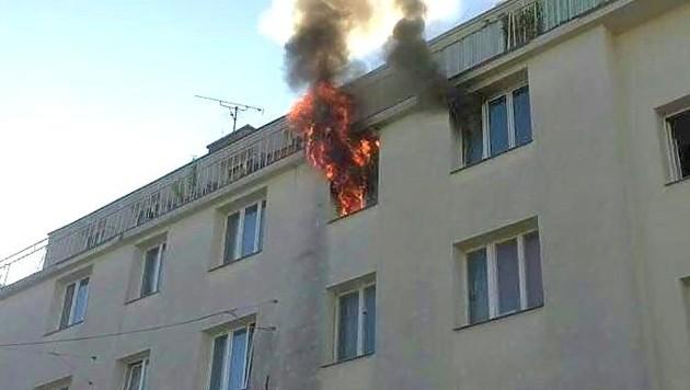 Bei einem Brand in dieser Wohnung in Wien-Hietzing starb eine 60-jährige Frau. (Bild: APA/STADT WIEN/FEUERWEHR)