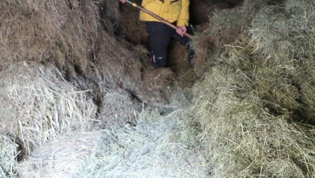 Durch eine Lücke im Boden stürzte der Mann ab. (Symbolbild) (Bild: Kronenzeitung)