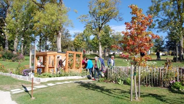Der Herbst hält im Bio.Garten.Eden in Aigen-Schlägl Einzug. (Bild: Bio.Garten.Eden)