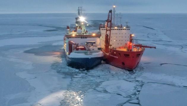Die Polarstern (links) mit dem russischen Eisbrecher Akademik Federov (Bild: Alfred-Wegener-Institut/Esther Horvath (CC-BY 4.0))