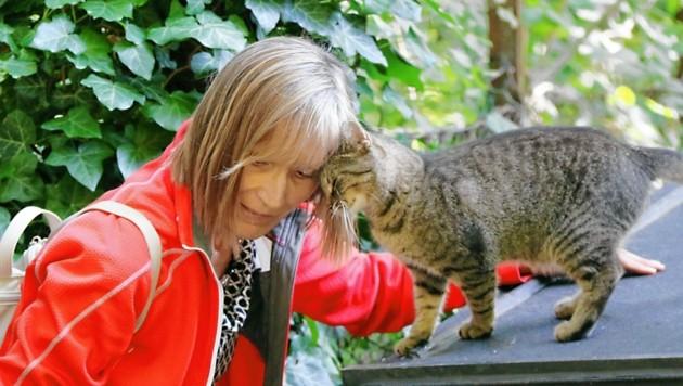 Sandra Muhr, ehemalige Preisträgerin, kümmert sich aufopfernd um Streunerkatzen. (Bild: Christian Jauschowetz)