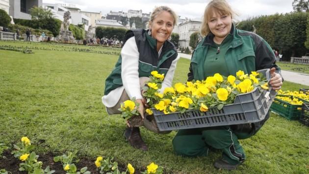 Barbara Unterkofler (li.) und Gärtnerin Georgia bei der Arbeit (Bild: Tschepp Markus)