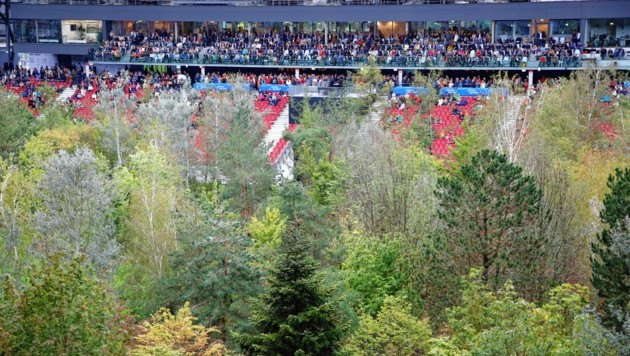 Der Stadionwald in Klagenfurt. (Bild: Rojsek-Wiedergut Uta)