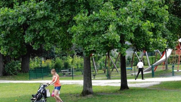Parks und Spielplätze sind aufgrund der Corona-Maßnahmen geschlossen. (Symbolbild) (Bild: MARKUS TSCHEPP)