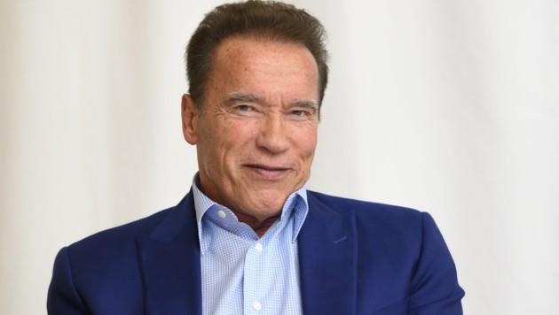 Arnold Schwarzenegger (Bild: Sundholm,Magnus / Action Press / picturedesk.com)