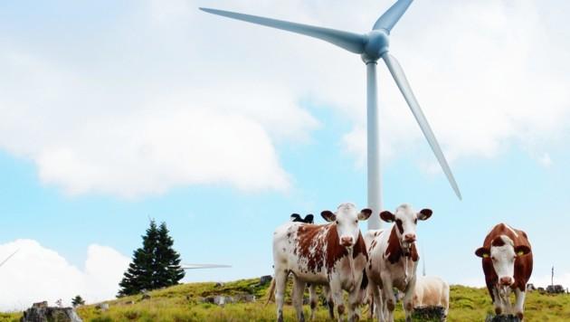 Almidylle? 200 neue Windräder sind in der steirischen Energiestrategie vorgesehen. (Bild: IG Windkraft)