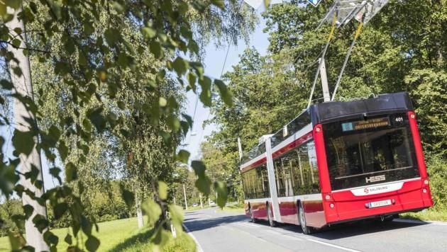 Ein Umbau der bestehenden Obus-Station ist zu teuer – das ergeben Berechnungen der Stadt (Bild: Salzburg AG)