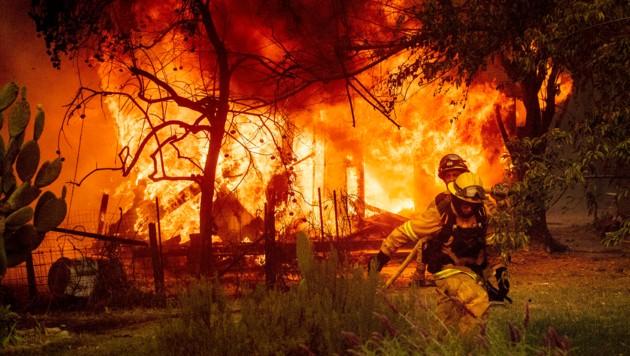 Auch im Sonoma County kämpfen Feuerwehrmänner gegen Waldbrände. (Bild: AP/Noah Berger)