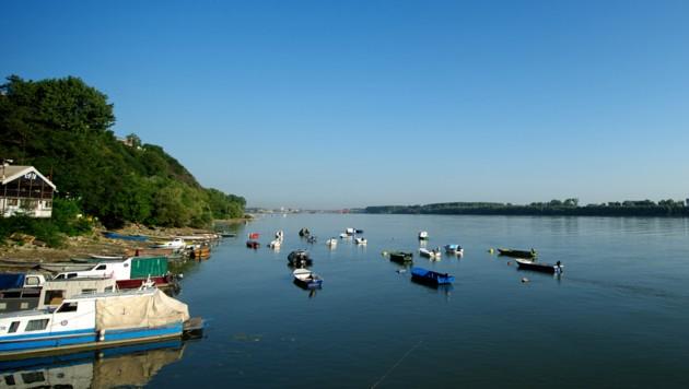 Die Donau nördlich der serbischen Hauptstadt Belgrad (Bild: AFP/)