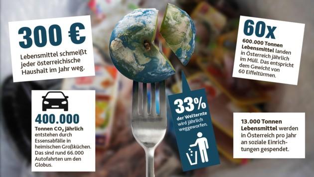 In Österreich landen 150 vollbeladene Sattelschlepper an Lebensmitteln im Müll – jeden Tag (Bild: ORF/First Look, Krone Grafik)
