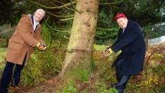 Gemeinsam mit Jaques-Lemans-Chef Alfred Riedl fällte Richard Lugner den Christbaum für die Lugner City. (Bild: Rojsek-Wiedergut Uta)