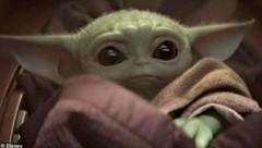 Die ganze Welt hat sich ins Yoda-Baby verliebt. (Bild: www.twitter.com)