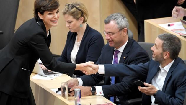(v.l.n.r.) Pamela Rendi-Wagner (SPÖ), Beate Meinl-Reisinger (NEOS), Norbert Hofer (FPÖ) und Herbert Kickl (FPÖ) (Bild: APA/ROLAND SCHLAGER)