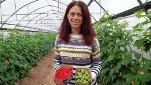 Viele Höfe finden keine Nachfolger, Irene Gombotz hingegen hat übernommen - und ist mit Beeren auf Erfolgskurs. (Bild: Sepp Pail)