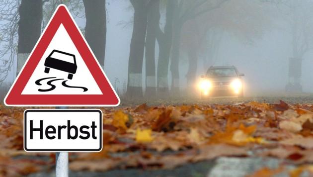 Alleen sind nicht nur für Autofahrer, sondern auch für Radfahrer im Herbst gefährlich. Mit Wasser vermischtes Laub macht die Straße häufig zur Rutschpartie. (Bild: Patrick Pleul, stockadobe)
