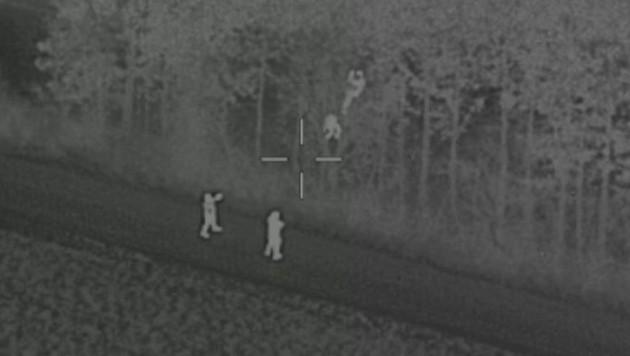 Eine Aufnahme, die man nicht alle Tage sieht: Einbrecher im Baum (Bild: BMI)