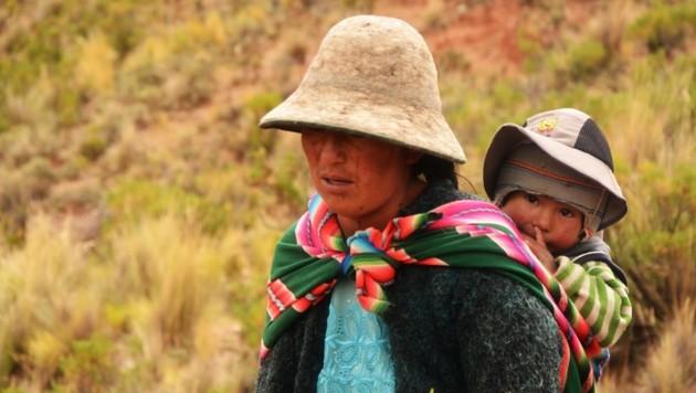 In Bolivien bilden Lamas für viele Indigene die Lebensgrundlage. (Bild: Bruder und Schwester in Not)