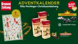 (Bild: Kronen Zeitung, Pischinger, VW)