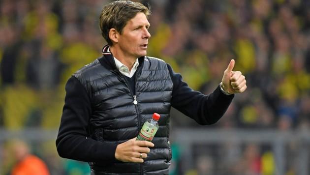 Wolfsburg-Trainer Oliver Glasner (Bild: AFP)