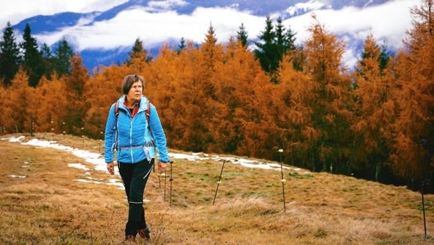 Der Bergwald entlang des Aufstiegs präsentierte sich uns in den schönsten Herbstfarben. Hanni Gratzer ist gerne mit Gästen unterwegs.