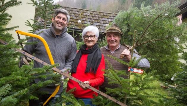 Hubert, Annemarie und Ignaz Taschek sind Christbaum-Experten in Gallizien. (Bild: Evelyn Hronek)