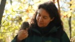 Sigrid Frey überwintert jährlich Hunderte Igel. (Bild: ServusTV/bfilm)
